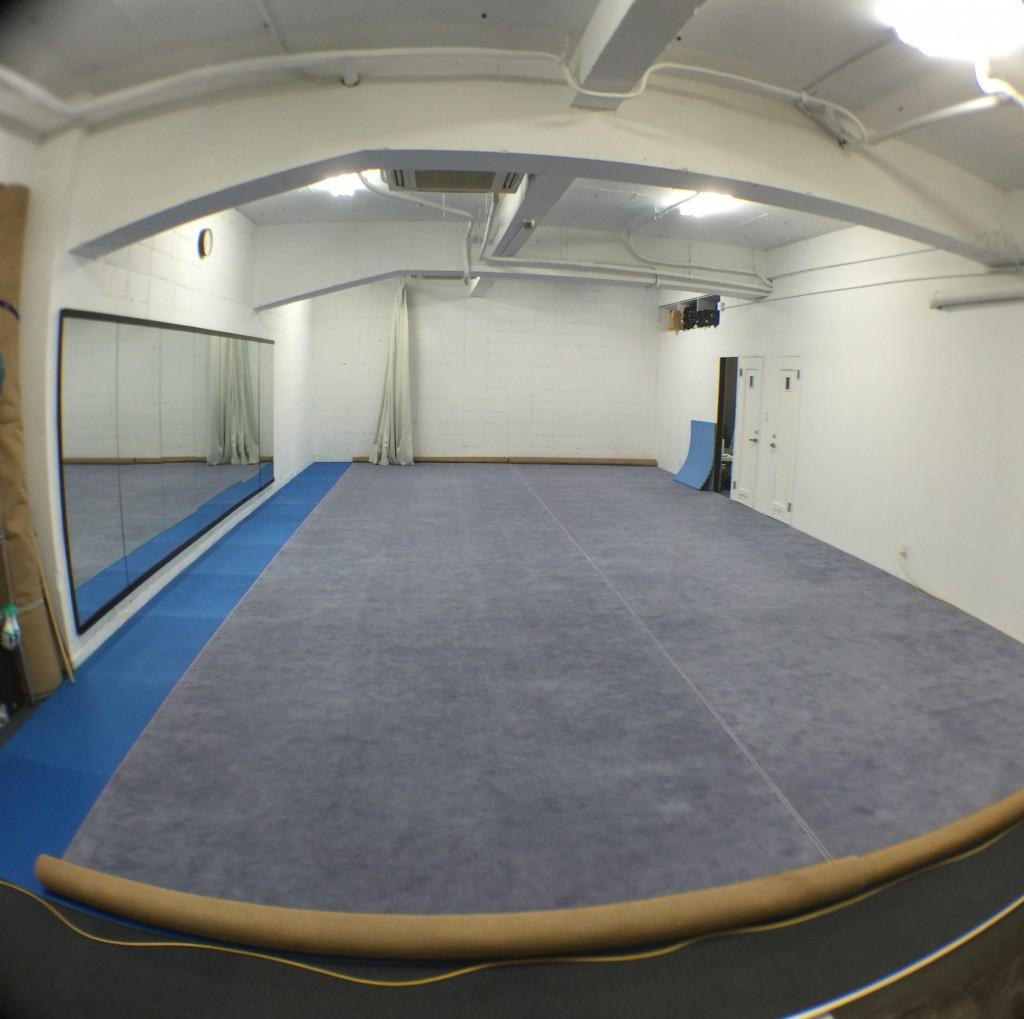 武術太極拳の競技用絨毯を本部道場