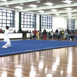 CENTRAL JAPAN WUSHU CUP